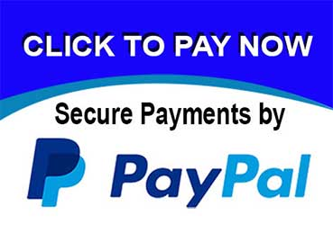 paypal payments tutorial video