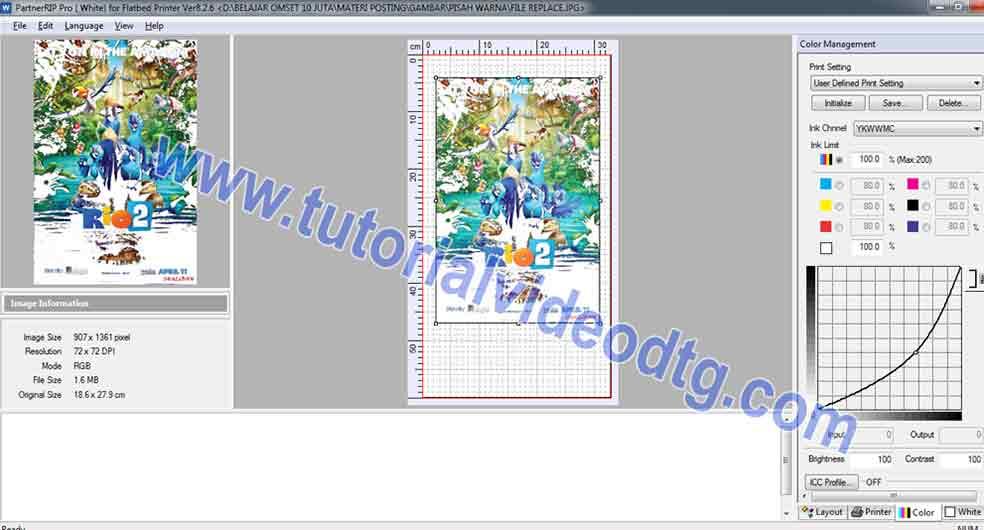 file print untuk warna