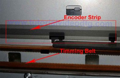 timming belt strip encoder