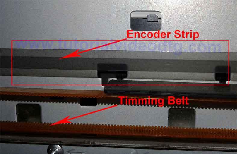 timming belt strip encoder